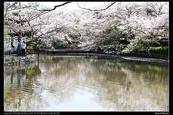 nEO_IMG_2015-04-06 D3 (40)