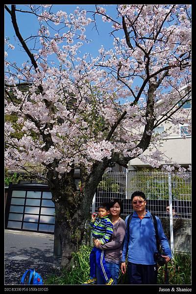 nEO_IMG_2015-04-06 D3 (20)