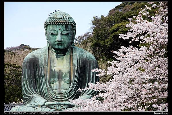 nEO_IMG_2015-04-06 D3 (75)