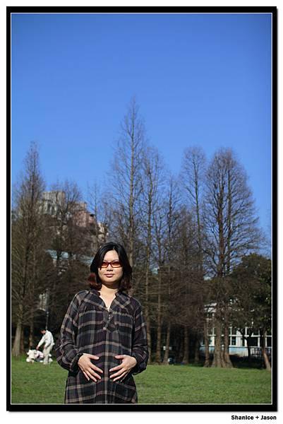2011-02-26_08.JPG