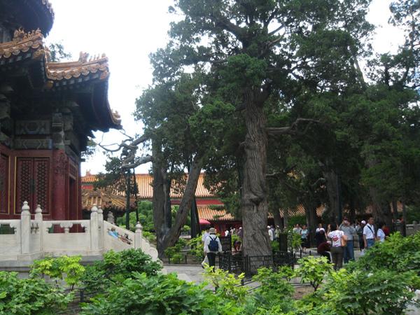 北京紫禁城33.JPG