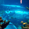 俯視海底隧道