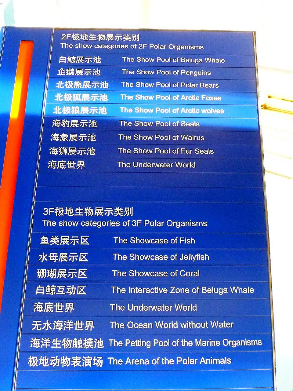 因為是極地海洋館,所以有一半的展場都是極地生物