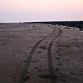 沙灘車狂飆