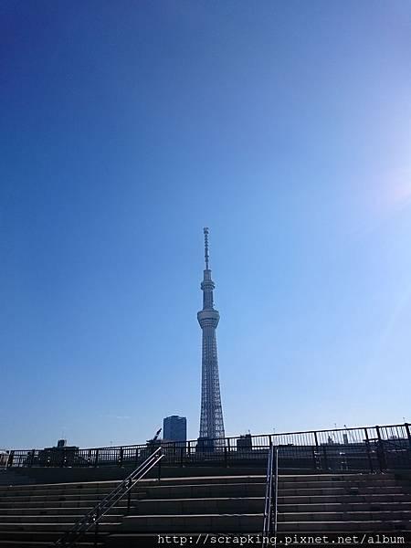 DSC_0221.JPG