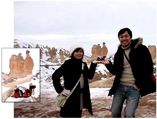 駱駝岩.jpg