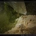 綠茶麵線~加入天然綠茶粉.jpg