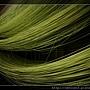 綠茶麵線~綠茶麵線烘乾.jpg