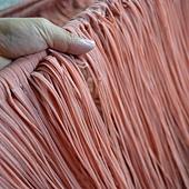 紅麴麵線-傳統手工製作過程 (18).jpg