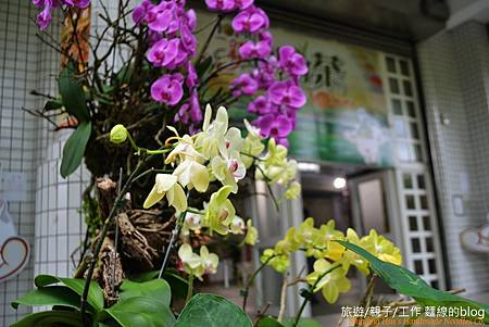 新北市好茶節-坪林區 (41)