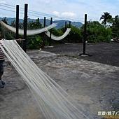 石碇國小-麵線體驗6-26 (174)