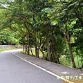 梅花湖-環湖腳踏車道[宜蘭旅遊] (6)