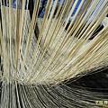 陽光下的手工麵線20130119_121539