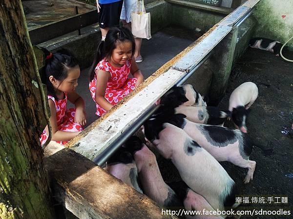 宜農農場-親子旅遊