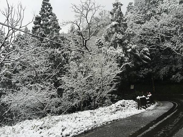 石碇賞雪,一日遊2016/1/24