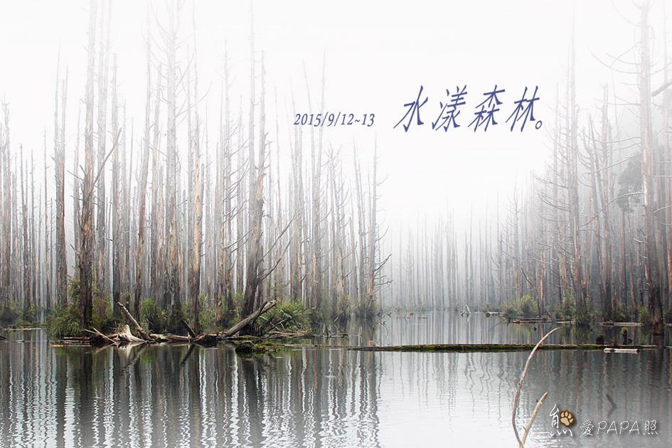 水漾森林 標題.jpg