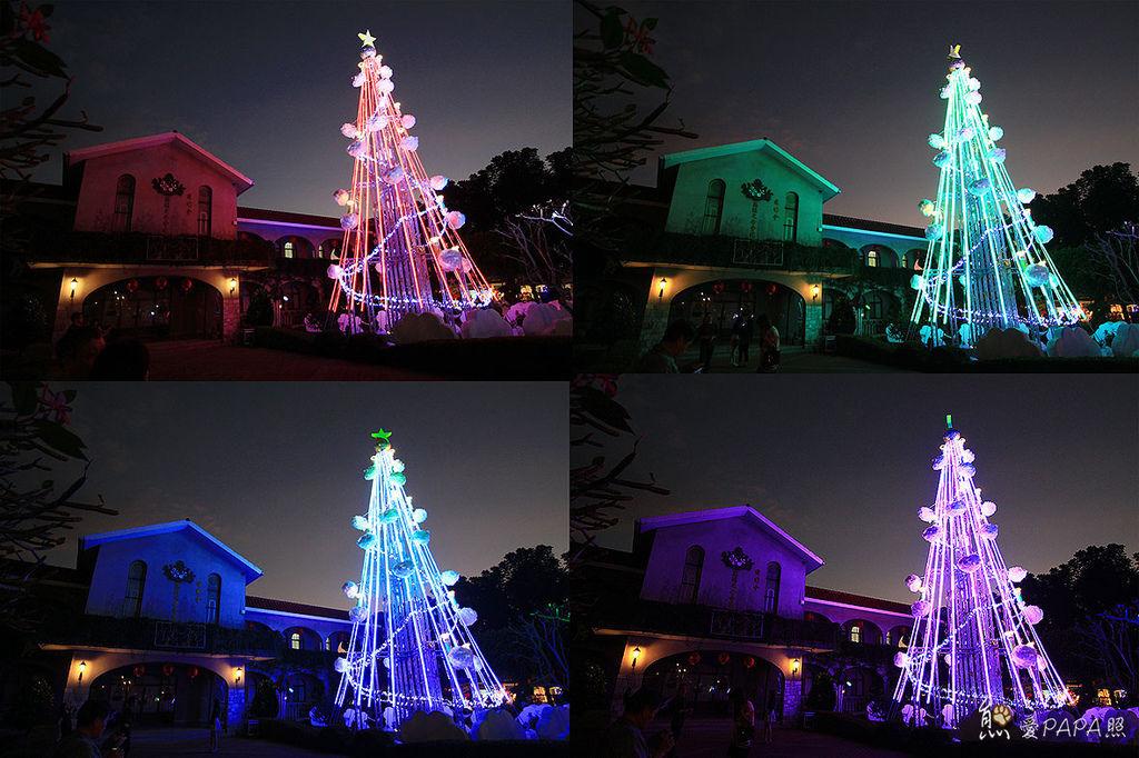 萬金聖誕樹.jpg