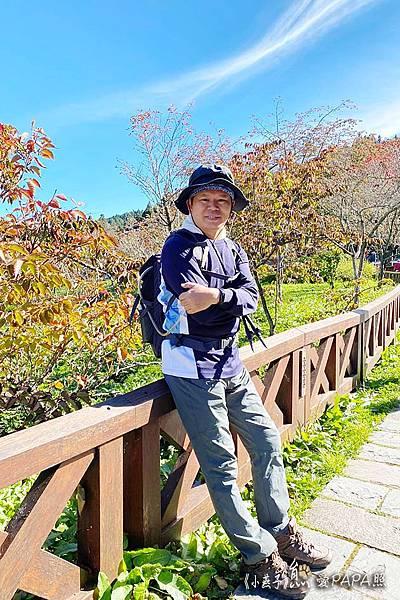 20201016小燕子阿里山眠月線_201023_2.jpg