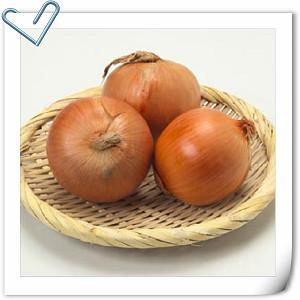 食材營養講座 – 洋蔥 / たまねぎ / Onion