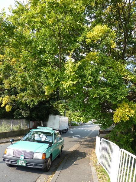 民宿往嵐山渡月橋的路上  被計程車背後的街景吸引 轉進岔路逛逛