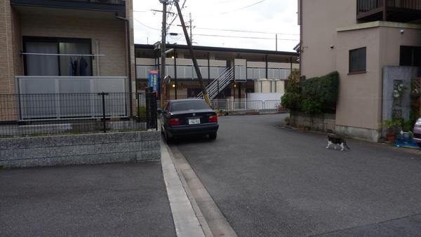 我所居住的民宿 是左邊 一樓有陽台的這間
