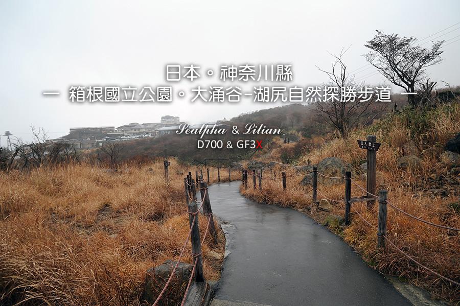 225-7.jpg