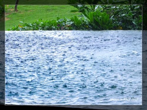 29午後大雨.JPG