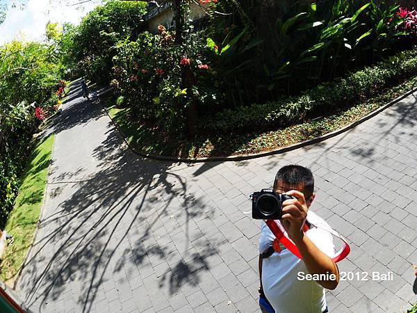 222我愛峇里島,是因為我試著想瞭解我要的是什麼?!