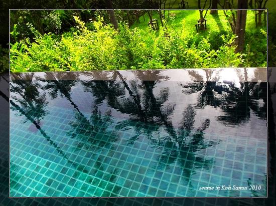 02先晨泳一下.jpg