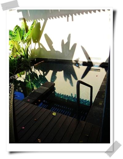 36 St. Regis-Suite有小泳池.jpg