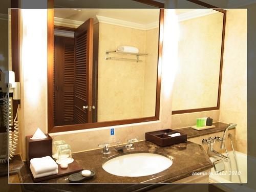 19 Nikko房間的浴室.JPG