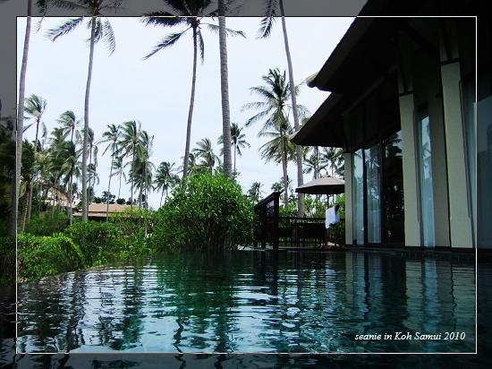 29午後泳池2.jpg