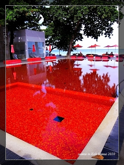31The Library的紅色泳池(CT).jpg
