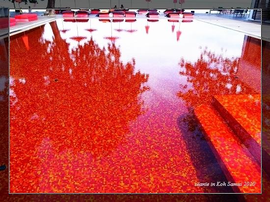 30多年前就對這紅色泳池驚豔.jpg