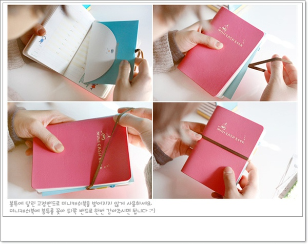 minicashbook.jpg