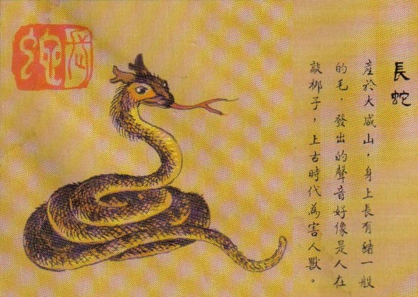 長蛇.jpg