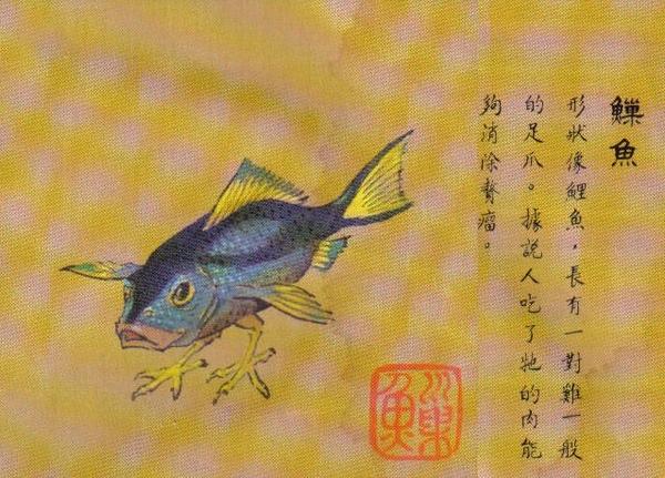 魚巢 魚.jpg