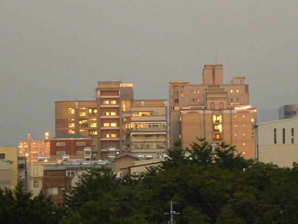 反射金光的遙遠大樓
