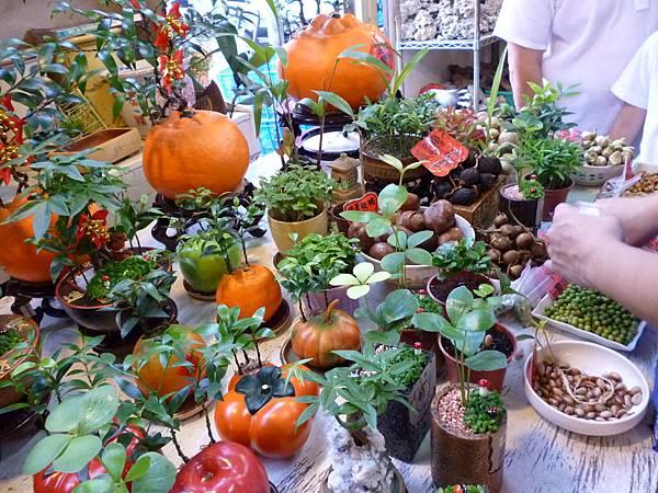 賣種子的攤子。國光花市