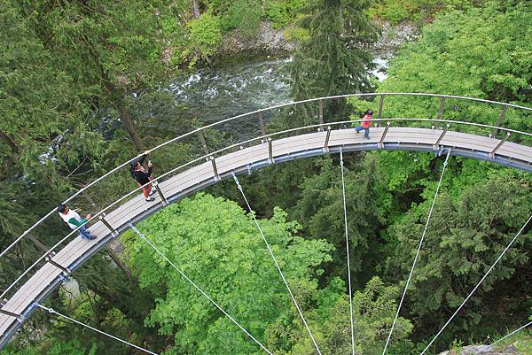 the-capilano-suspension-bridge-just-north-of-vancouver-british-columbia