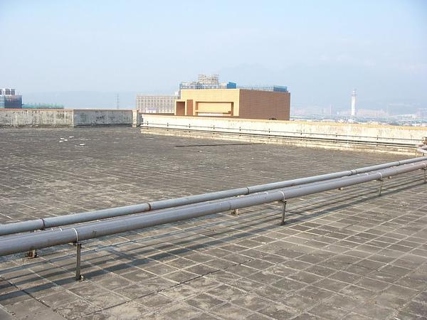 20080109七樓頂.JPG