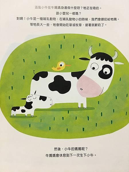 【潛力種子】繪本:認識牛奶