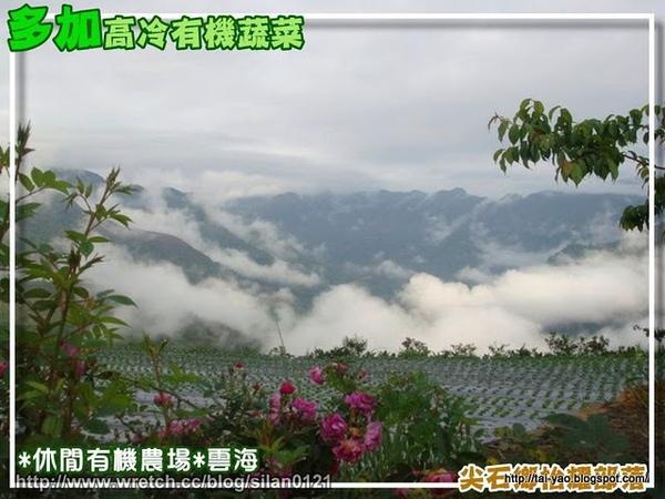抬耀雲~1.JPG