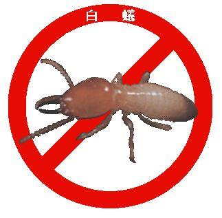 白蟻-2-1.jpg