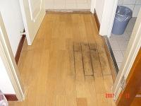 木地板潮溼變軟,是白蟻開始繁殖的最佳場所