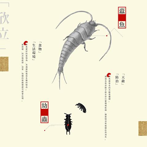 蠹魚.png