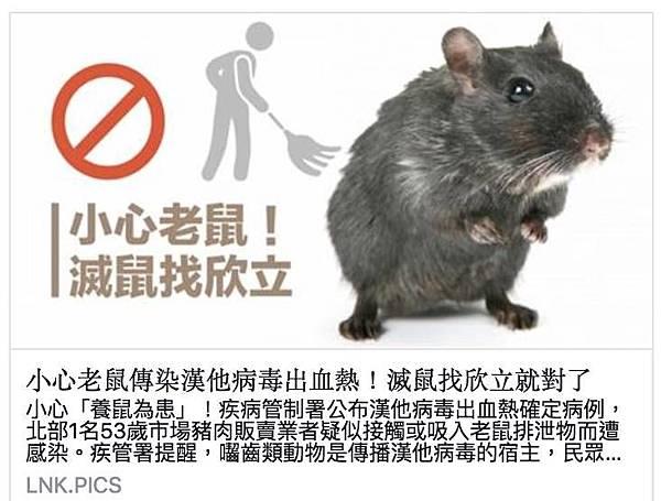 滅鼠找欣立.jpg