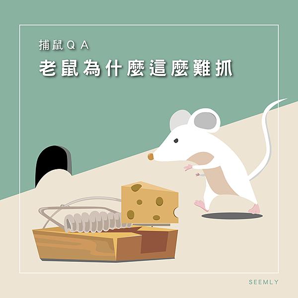 滅鼠專家.png