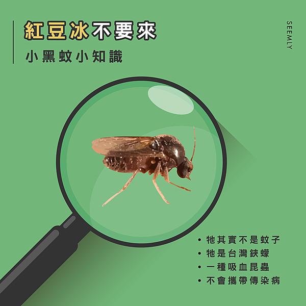 小黑蚊.png