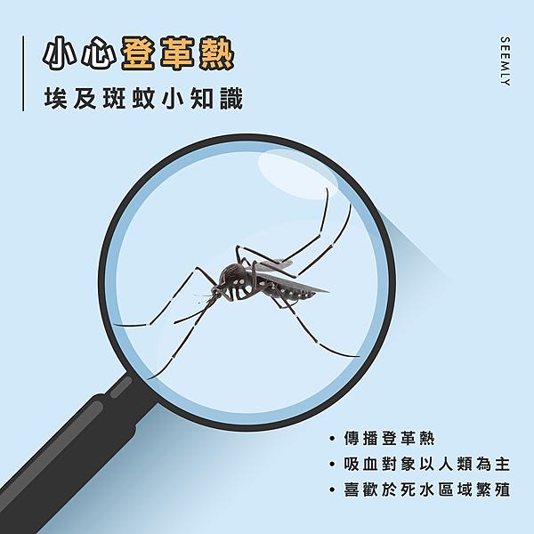 蚊子登革熱.jpg